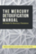 Mercury-Front.jpg