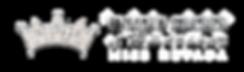 NVwebsitelogo (1).png