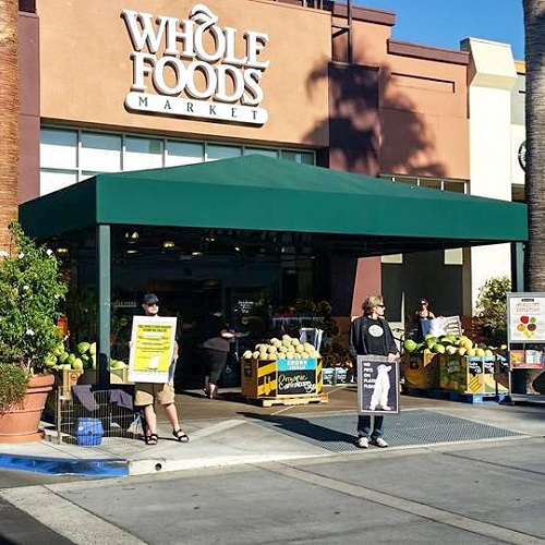 Whole Foods Campbell