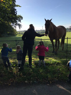 Petting the ponies!
