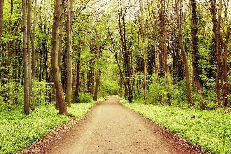 Trouver son chemin intérieur, aller de l'avant, aller au bout dans la réalisation de ses objectifs de vie.