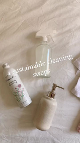4 Easy Low Waste Cleaning Swaps