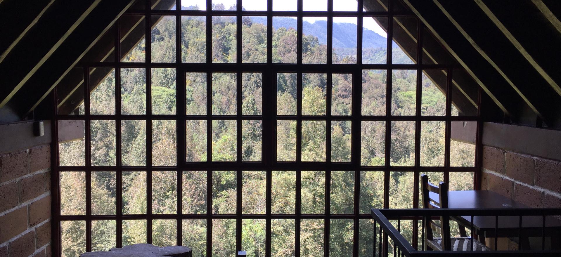 Vista al Pico de Orizaba