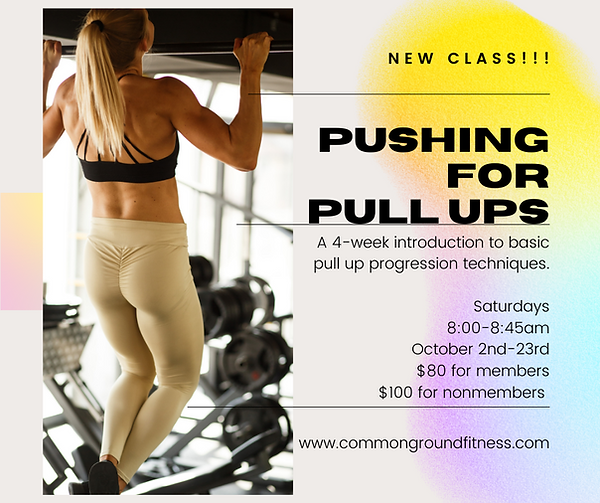 Pushing for Pull Ups FB Post.png