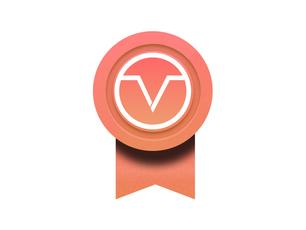 Meet Vizer's Founding 100 Business Partners
