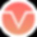 Vizer Logo