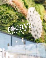 Tocaya Organica Door