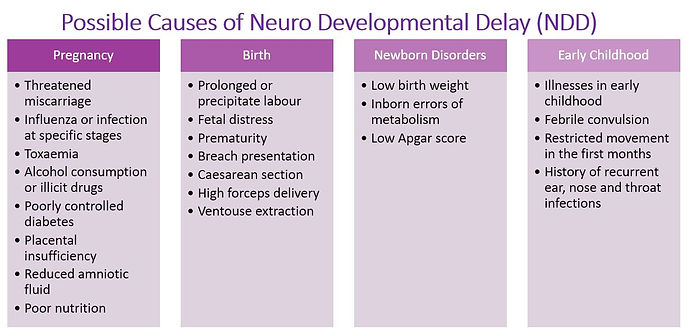 Possible Causes for NDD
