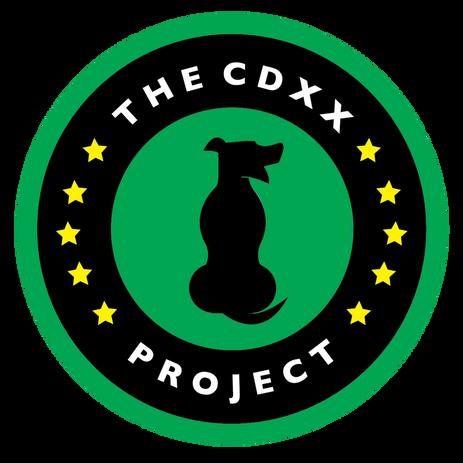 CDXXportfolio1.png
