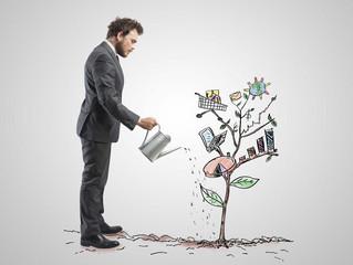 Малый бизнес освободили от плановых проверок на 2022 г.