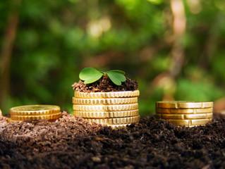 Получаем льготу по земельному налогу
