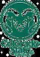 colorado-state-logo.png