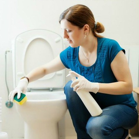 Plumber Pine Bush, NY 12566 | Top Notch Plumbing and Heating Toilet Cleaning