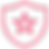 icon-sheild-pink.png