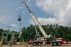 Coastal Crane on Site 08.2017