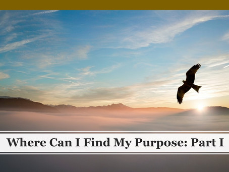 Where Can I Find My Purpose: Part I