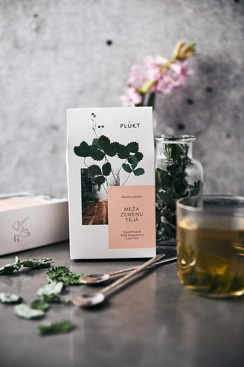 Wild Strawberry Leaf Tea