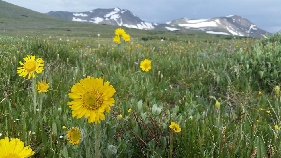 James Peak, Colorado