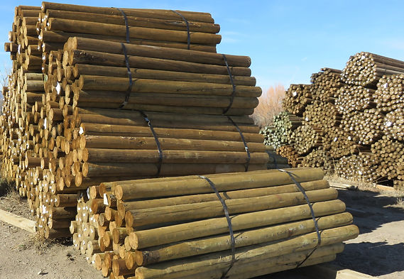 Field Posts, Fence Posts