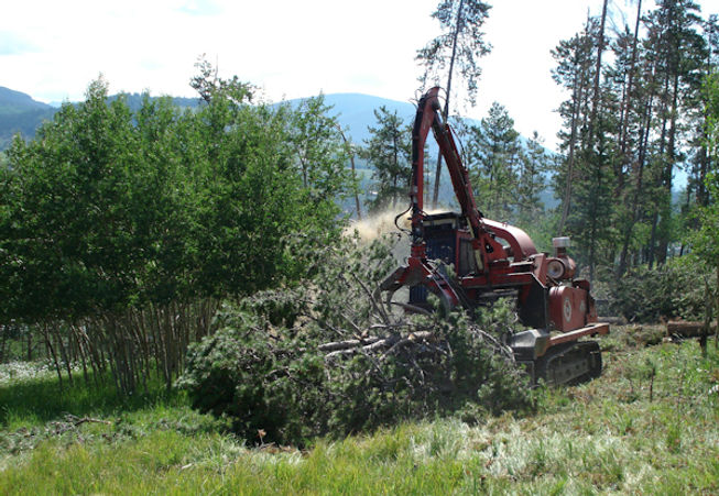 Morbark 20/36 Whole Tree Chipper
