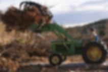 HELPING TREE FARMERS