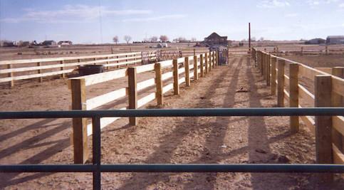 Post & Board Fence