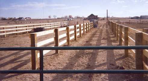 Post & Board Fence