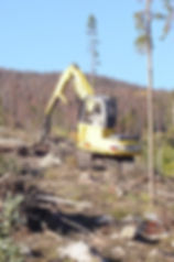 Kobelco 130 Log Loader