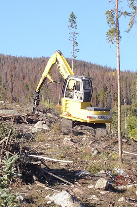Kobelco 130 Log Loader