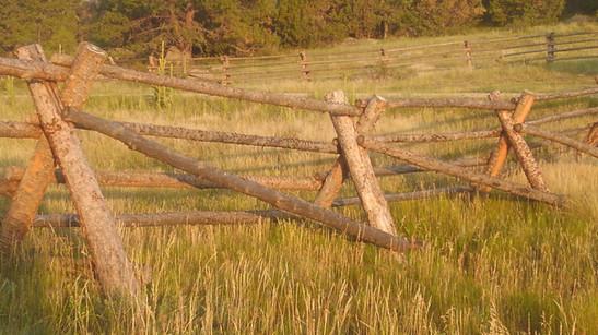 Buck & Rail Fence
