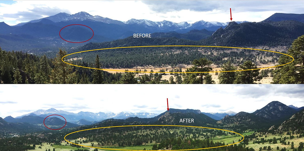 McGregor Ranch Estes Park Before and After