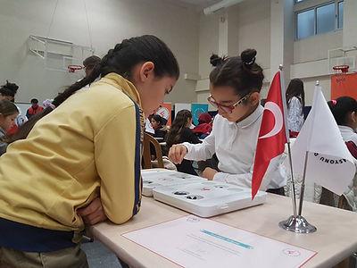 istanbul-büyükçekmece-pendik-ilkokullar-