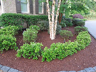 Mulch, Stone, Rock, Soil, Raleigh, Garner, Apex, Cary, Holly Springs, Durham, Clayton, Morrisville