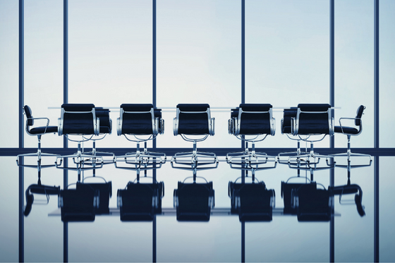 Addressing the CEO development gaps