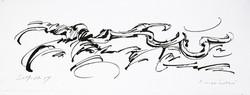 03 - Calimorphisme - Encre - 40 x 50 cm