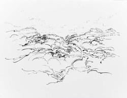 Metalandscape - 19 - Encre indigo sur pa
