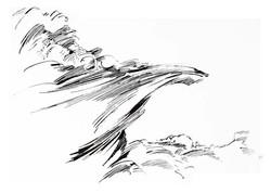 01 - Calimorphisme - Encre - 40 x 50 cm