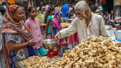 expo india-58