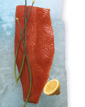 Salmon-on-ice.jpg