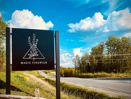 Mon premier vlog voyage dans un lieu magique : Magic Tingwick