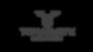 Logo TOMA bronze.png