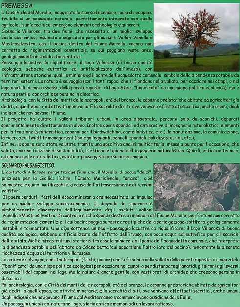 POSTER Morello SIEP_05.jpg