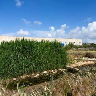 Screenshot_2021-01-18 Sostenibilità e responsabilità ambientale Acqua Santa Maria.png