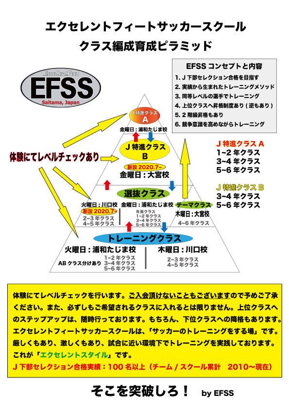 育成ピラミッド.JPG