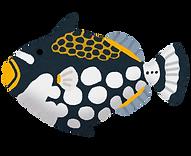 fish_mongara_kawahagi.png