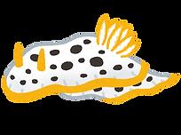 fish_shiro_umiushi.png