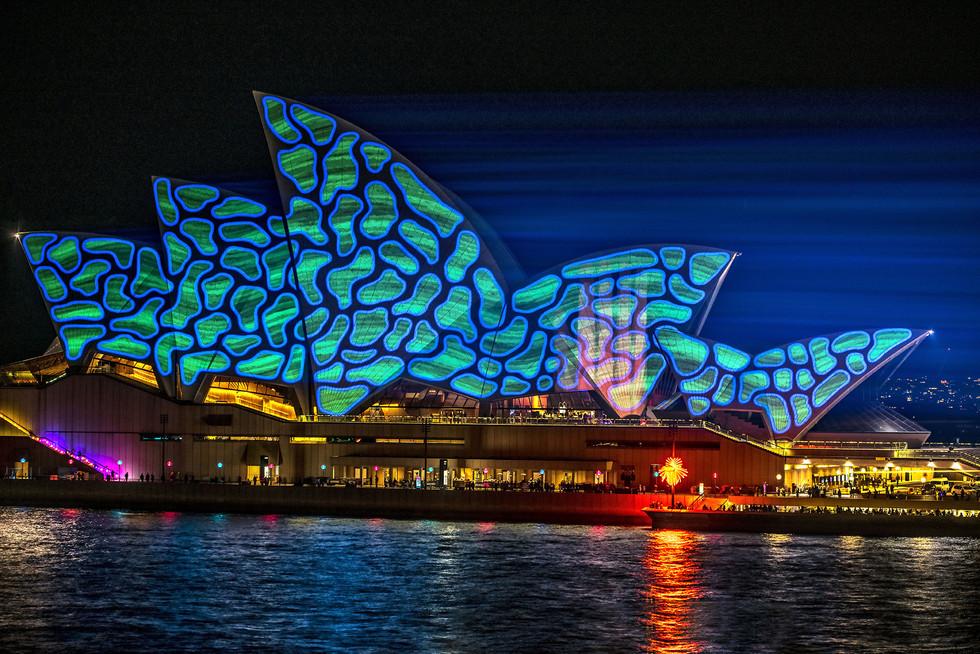 Splendens, Sydney Opera House 2014_VIVID.jpg