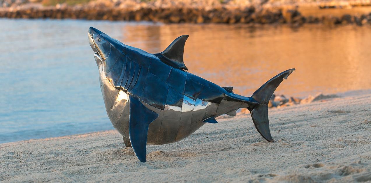 Fat Shark. Steel&Inox.140cm.