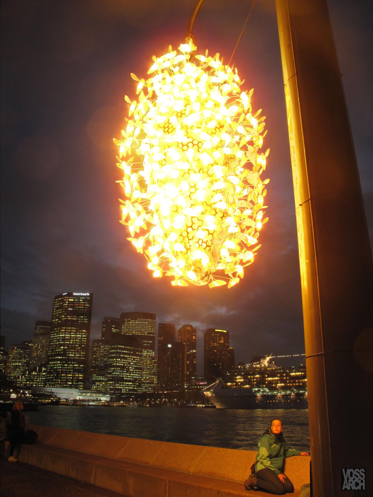 BEES at Sydney opera House.jpg