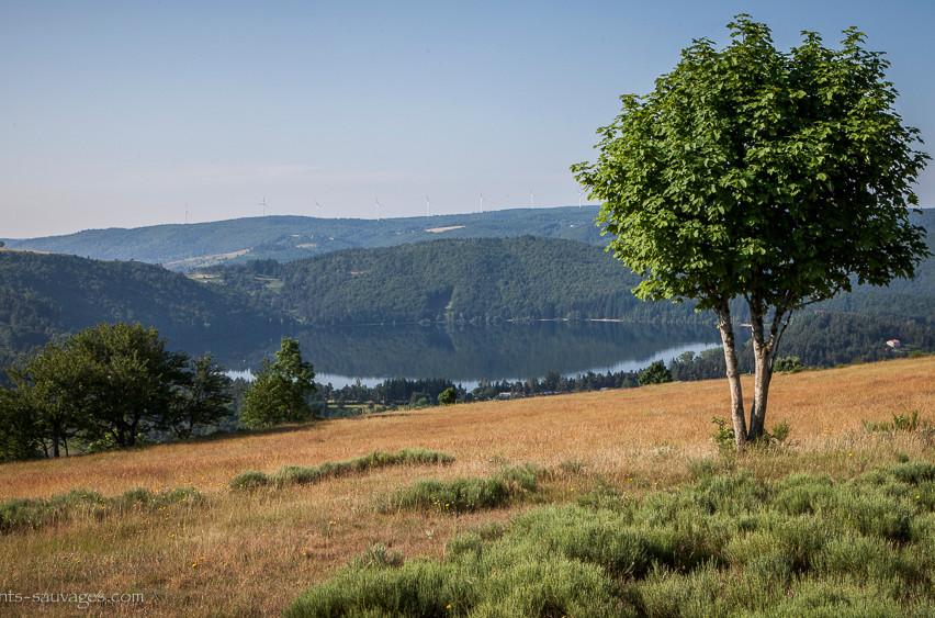 017_Lac d'Issarlès-Ardèche